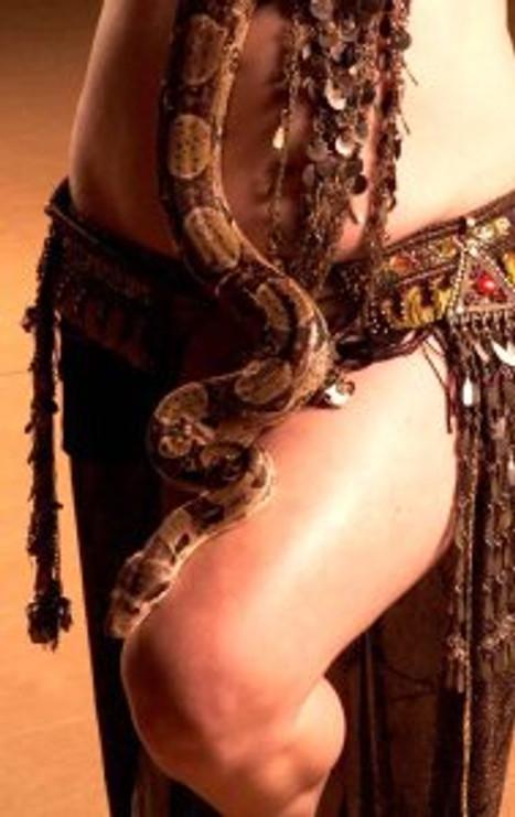 serpente_2