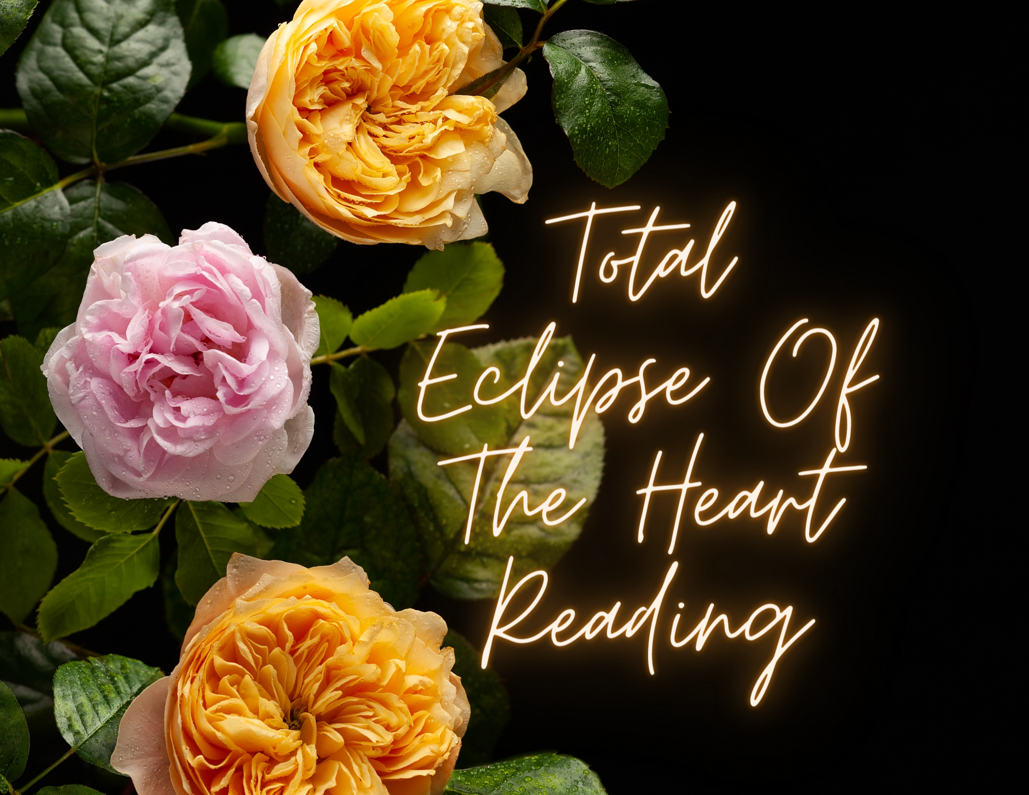 Total Eclipse Of The Heart Reading