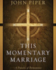 this-momentary-marriage-231x284.jpg