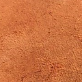 Russet Roughout