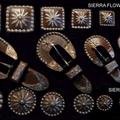 Sierra Flower.PNG