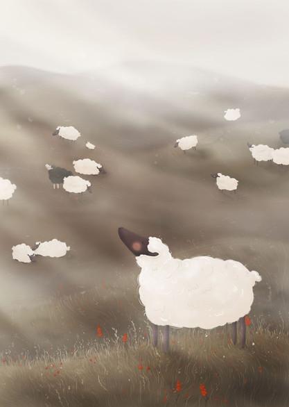 mgła   the fog