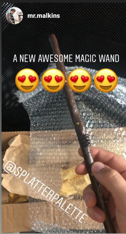Newt's Suitcase Wand