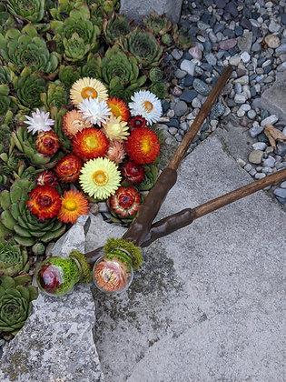 Straw Flower Wand