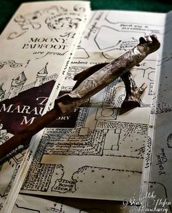 Marauder's Map Wand