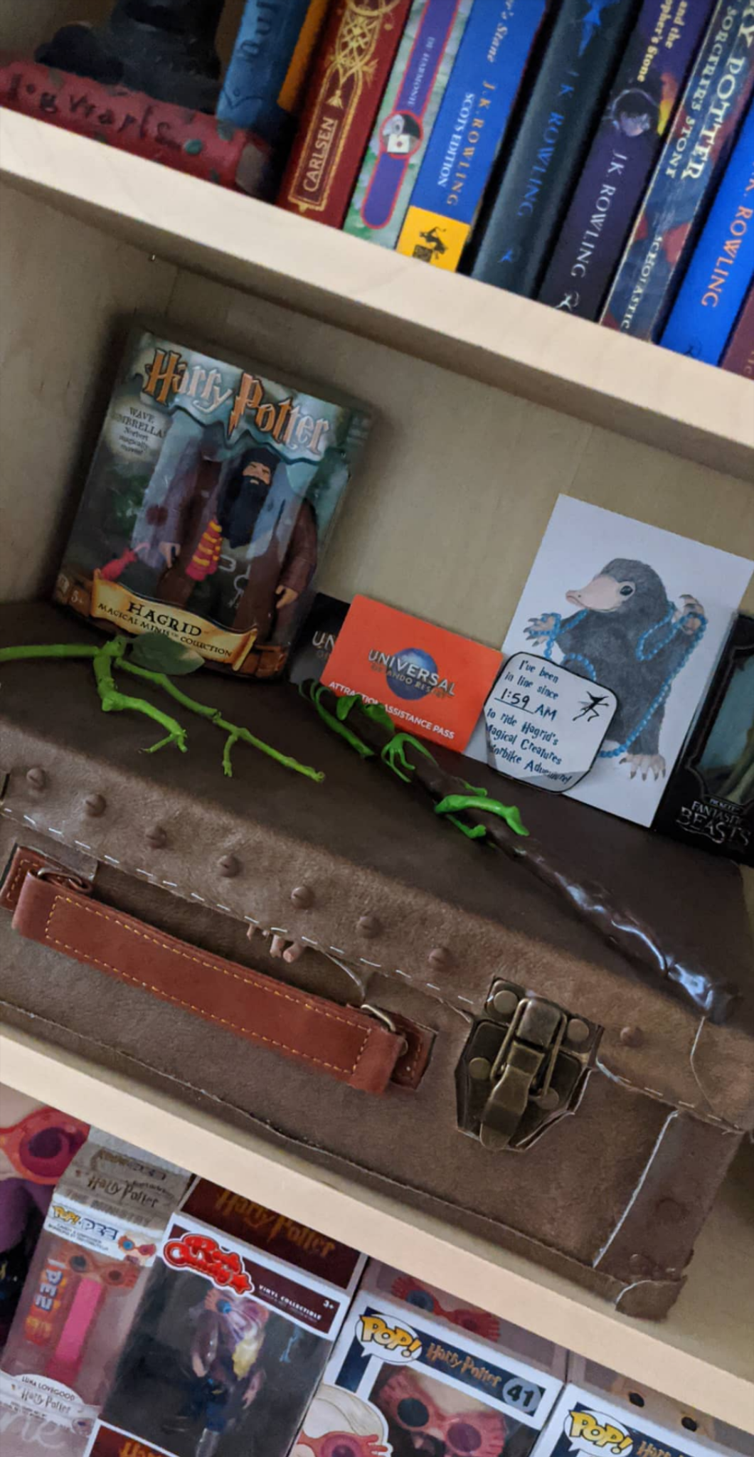 Shelf photo