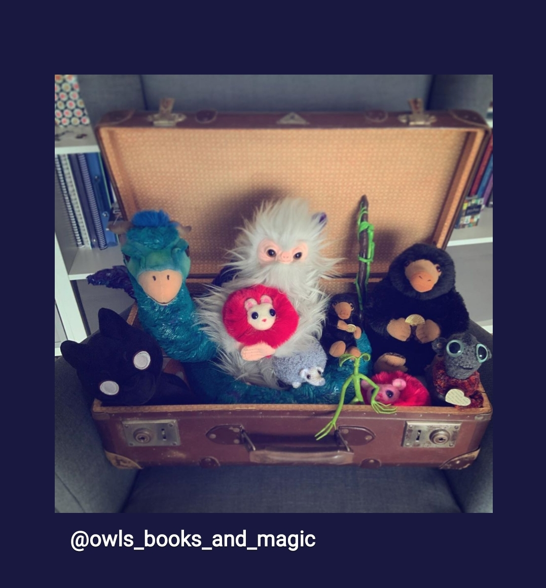 Magical Creatures Collection