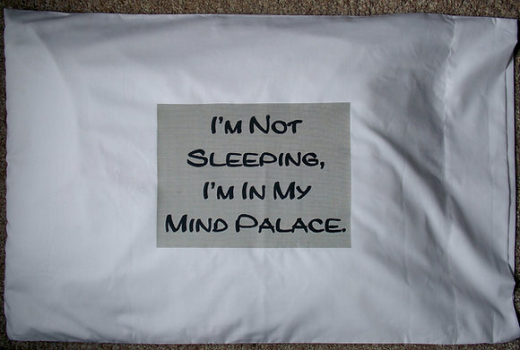 Mind Palace Pillow Case