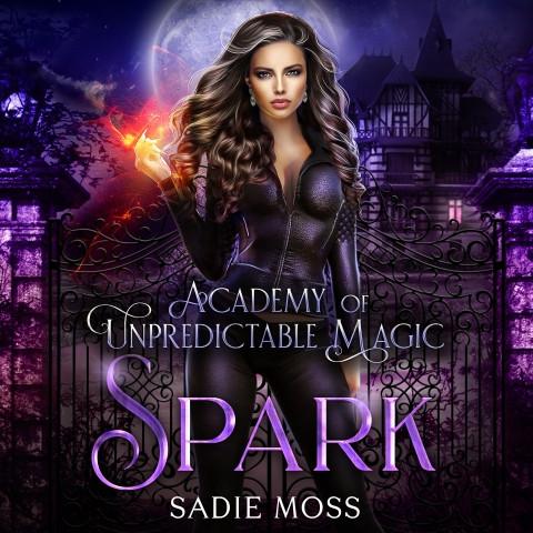 Spark Academy of Unpredictable Magic Book 1