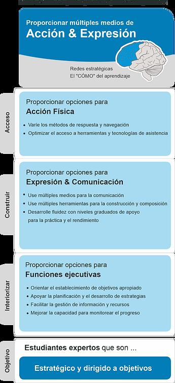 ACCION_Y_EXPRESIÓN.png