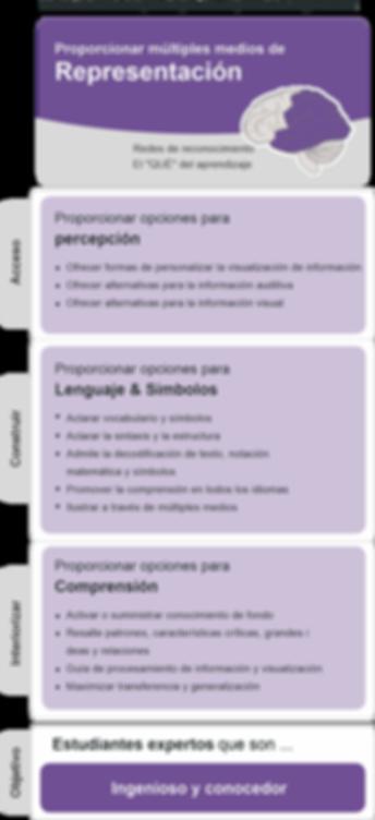 REPRESENTACIÓN.png