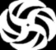 logo phins_005_mandala_branca.png
