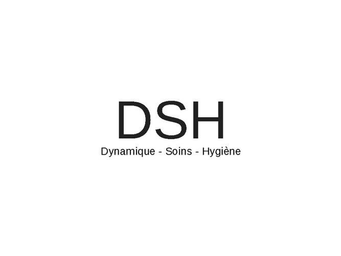 Logo DSH.jpg
