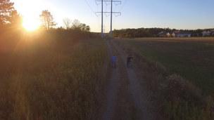 Bikers Sunset
