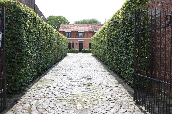 Karaktervolle woning met tuin & stallingen