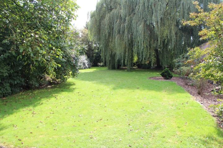 Open bebouwing met tuin & stallingen