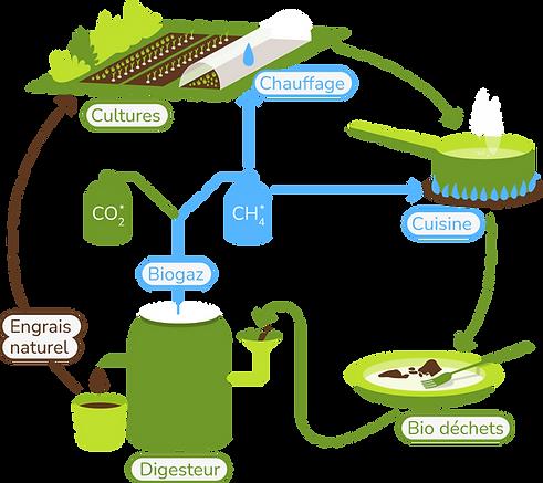 Schéma Biodigesteur v2.png