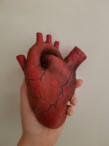 Heart - front
