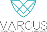 LOGO VARCUS_edited_edited.png