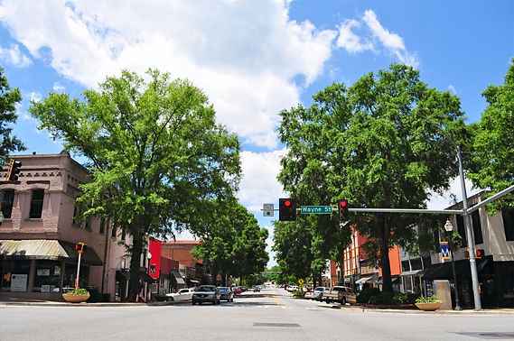 streetscape_downtown_milledgeville_42139