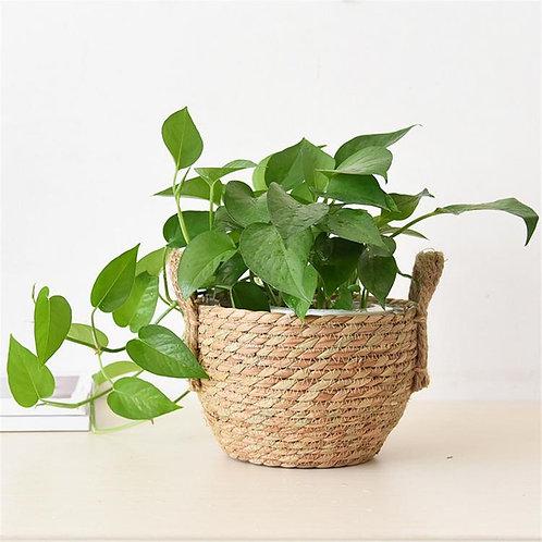 Oli Plant Basket, Flower Basket, Planter
