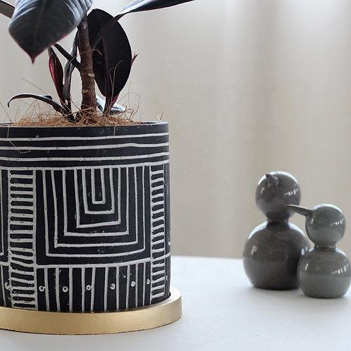 Adonis Mediterranea  Pattern  Cement Plant, Flower Pot, Planter