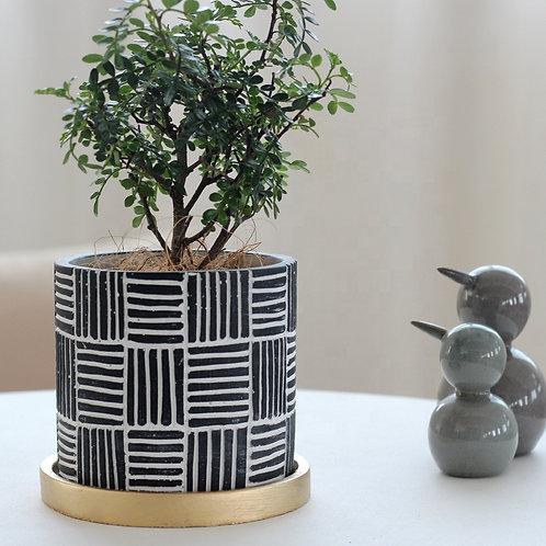 Adonia Mediterranean  Pattern  Cement Plant, Flower Pot, Planter