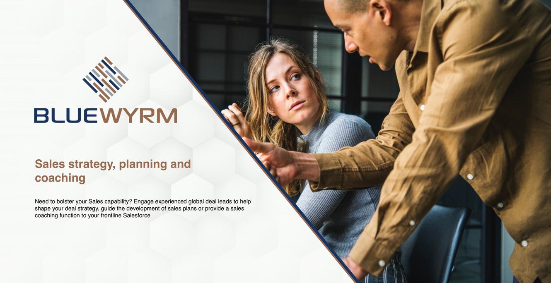 Sales Coaching Blue Wyrm.png