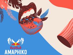 Red Bull - Festival Amaphiko
