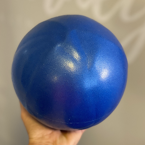 Barre and Mobility Ball