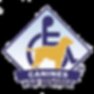 CFS logo_png.png