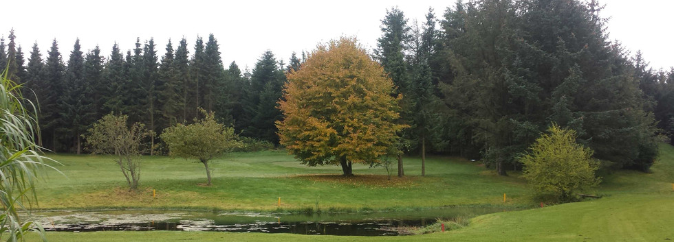hul 3 efterår