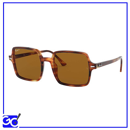 Rayban Sole - RB1973