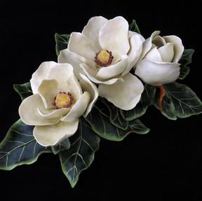 Magnolia flowers 2.jpg