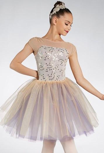 Beginner Ballet.jpg