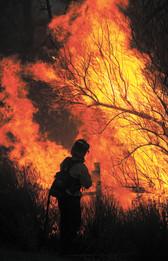 Fighting a grass fire