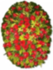 coroa_vermelha_e_amarela_-_Cópia.jpg