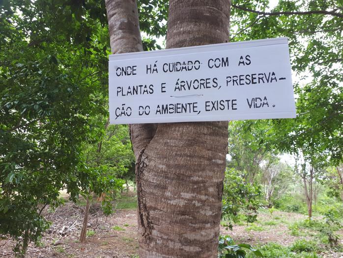 Mato Grosso é Douradinho