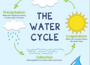 Read It, Play It, Sing It, Try It: Offering Water to Kids