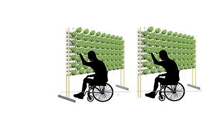Wheel Chair Farming - Two Stands.jpg