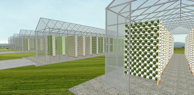 Greenhouse Subdivision C 14-9-19 For Wix