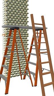 Calflower D Decker Scafold W Ladder.jpg