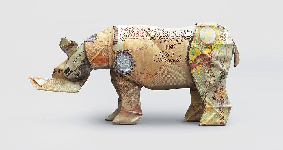 WWF_Rhino.jpg