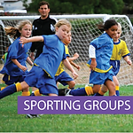 Sporting Industry