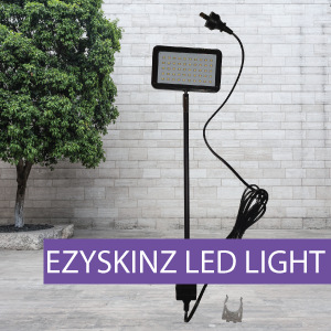 EZYSKINZ - Display Stand - LED Light