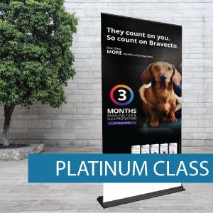 Product - Platinum Class 1.png