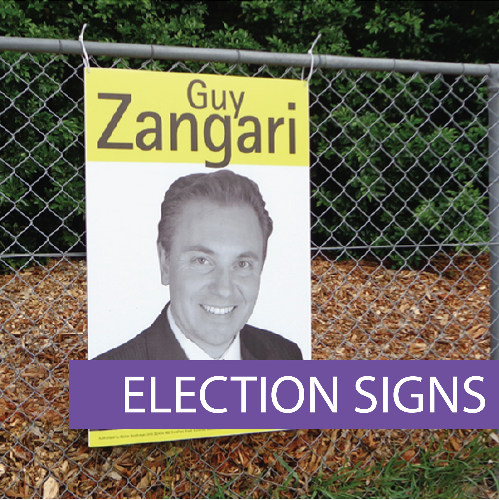 Political party signs