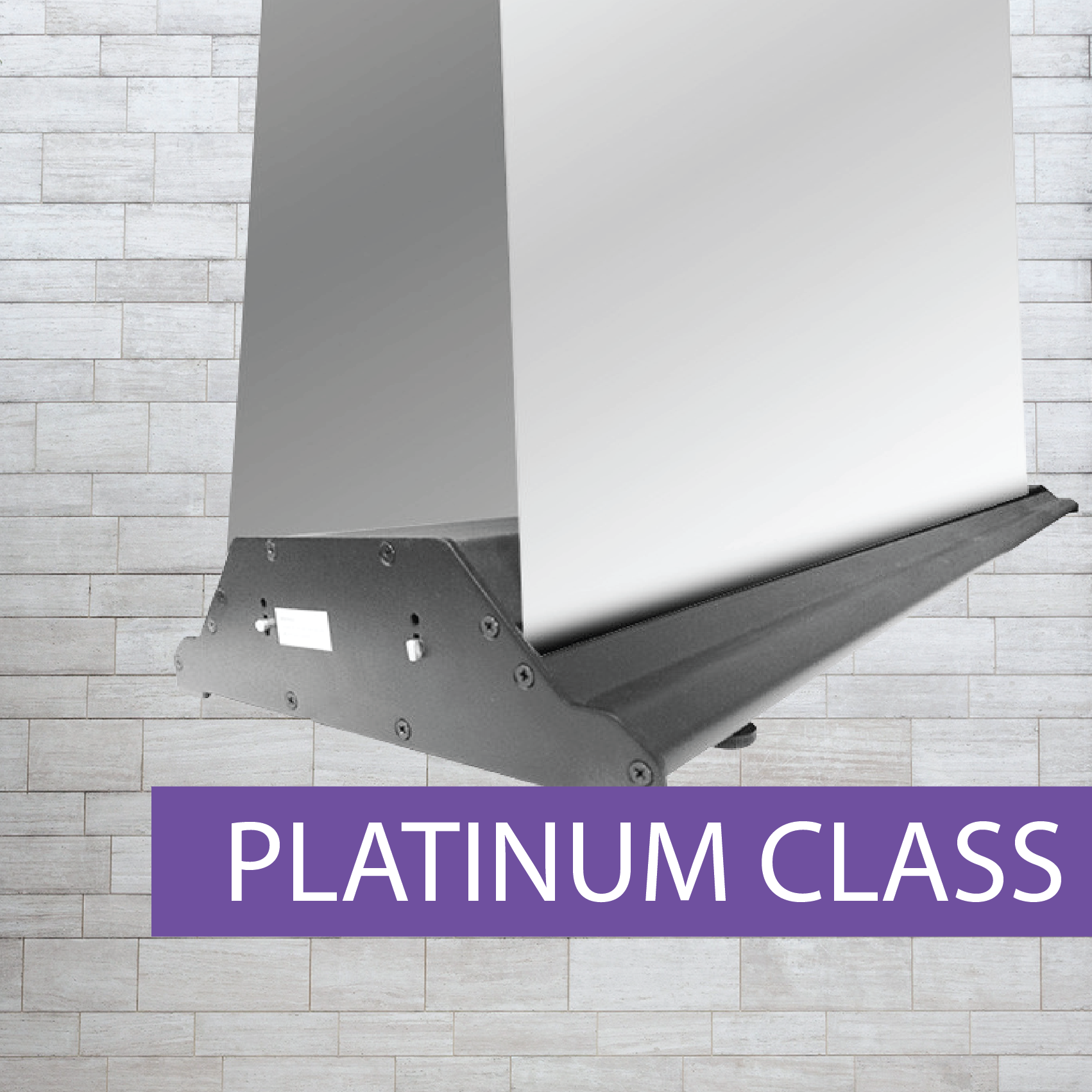 Double Sided platinum style pull-up