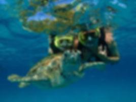 Tortuga al lado del barco en Tobago Cays, San Vicente y las Granadinas