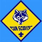 Cub Scouts.jpeg
